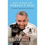 How To Raise The Perfect Dog From Puppyhood To Beyond By Cesar Millan